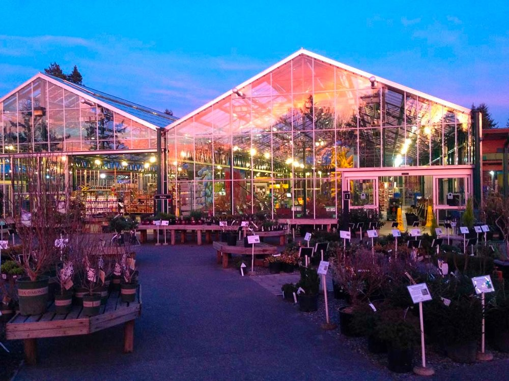 2016 greenhouse sunset.jpg