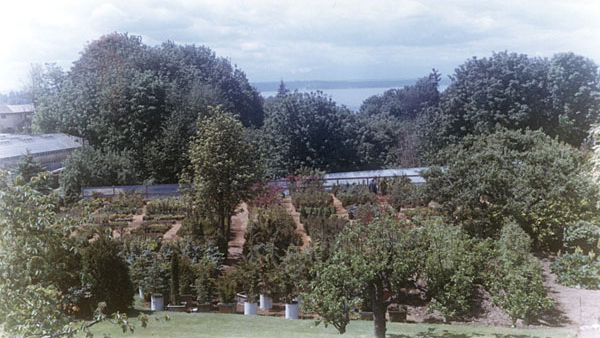 50s-early-view-west-growing-beds_cropped.jpg