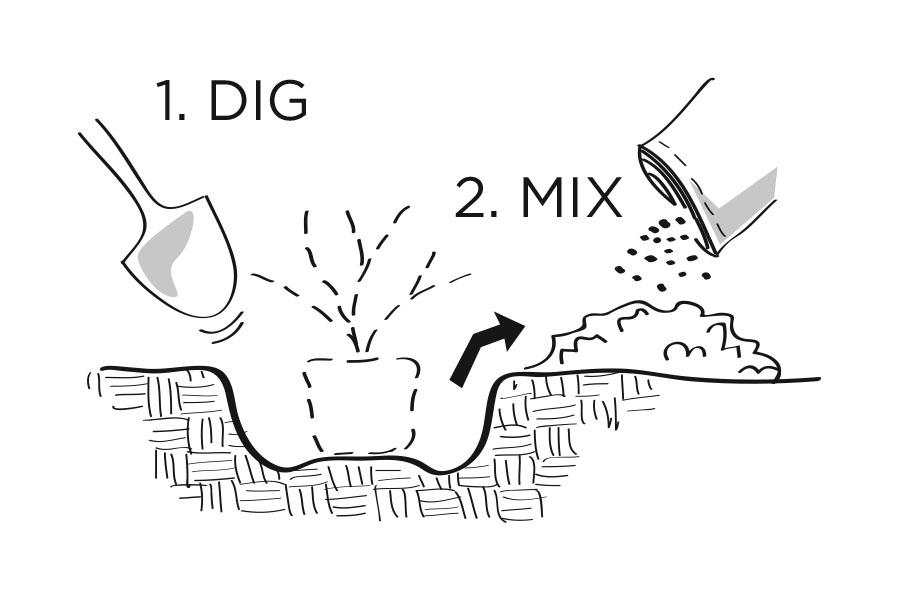 plantingdiag1-2.jpg