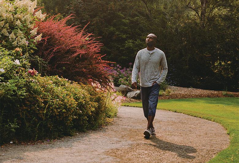 Take a Mindful Walk Today — Seattle's Favorite Garden Store Since 1924 -  Swansons Nursery