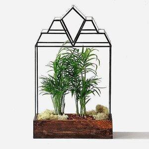 Terrarium Shop Leadhead Glass
