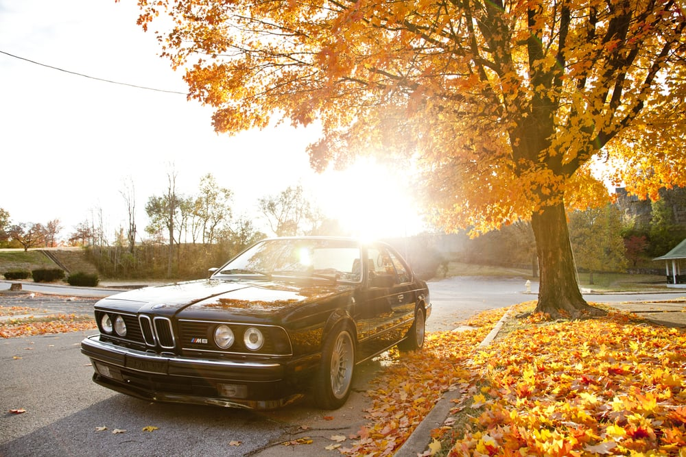 BMW M6 Print