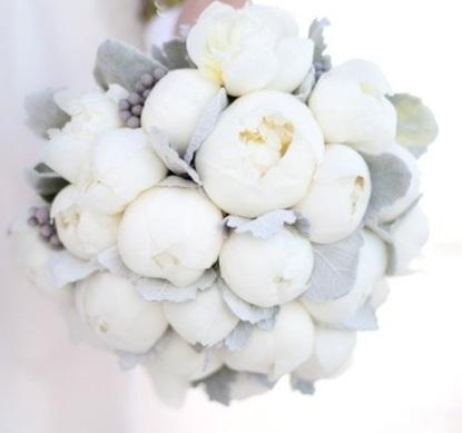 witte pioeny.jpg