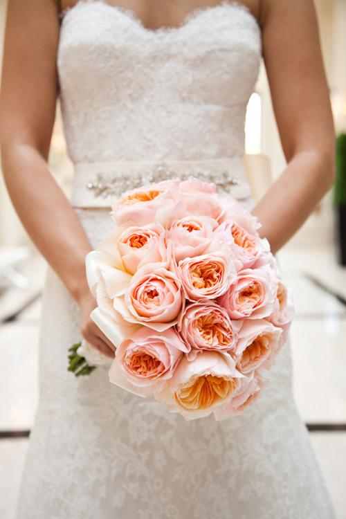1 Juliet-roses.jpg