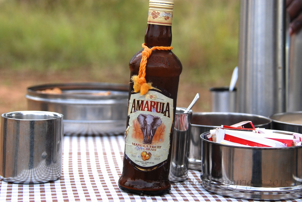 Amarula is like Bailey's but better, and it is a perfect substitute for milk and sugar in your morning coffee. See  www.amarula.com