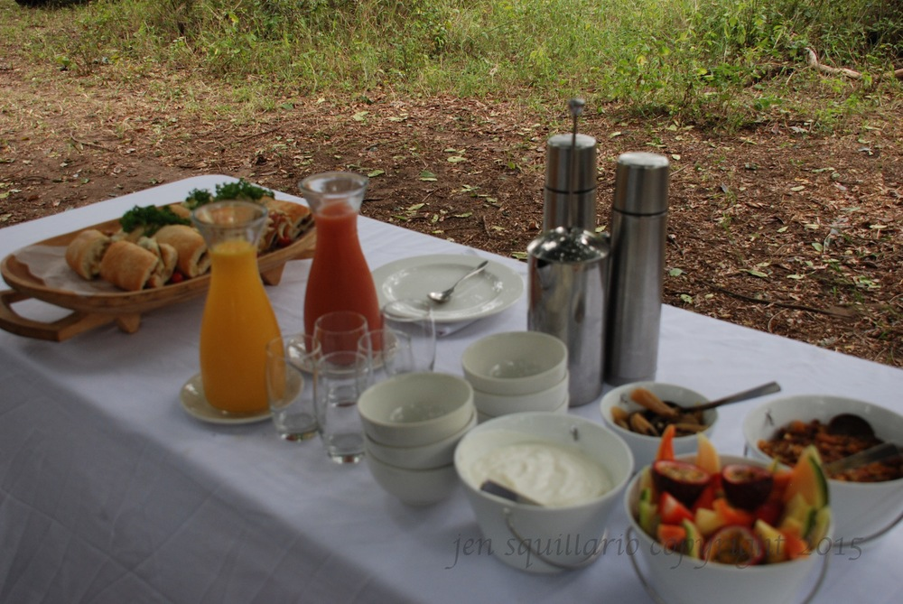 In the bush, our butler at the camp set up a bush breakfast of fresh fruit, yogurt, fried egg sandwiches, and coffee. The photo is a bit blurry (I must have been too hungry to concentrate), but it gives a good impression of how fabulous the breakfast was.