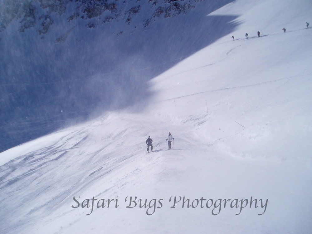 Mineral Basin - 2007