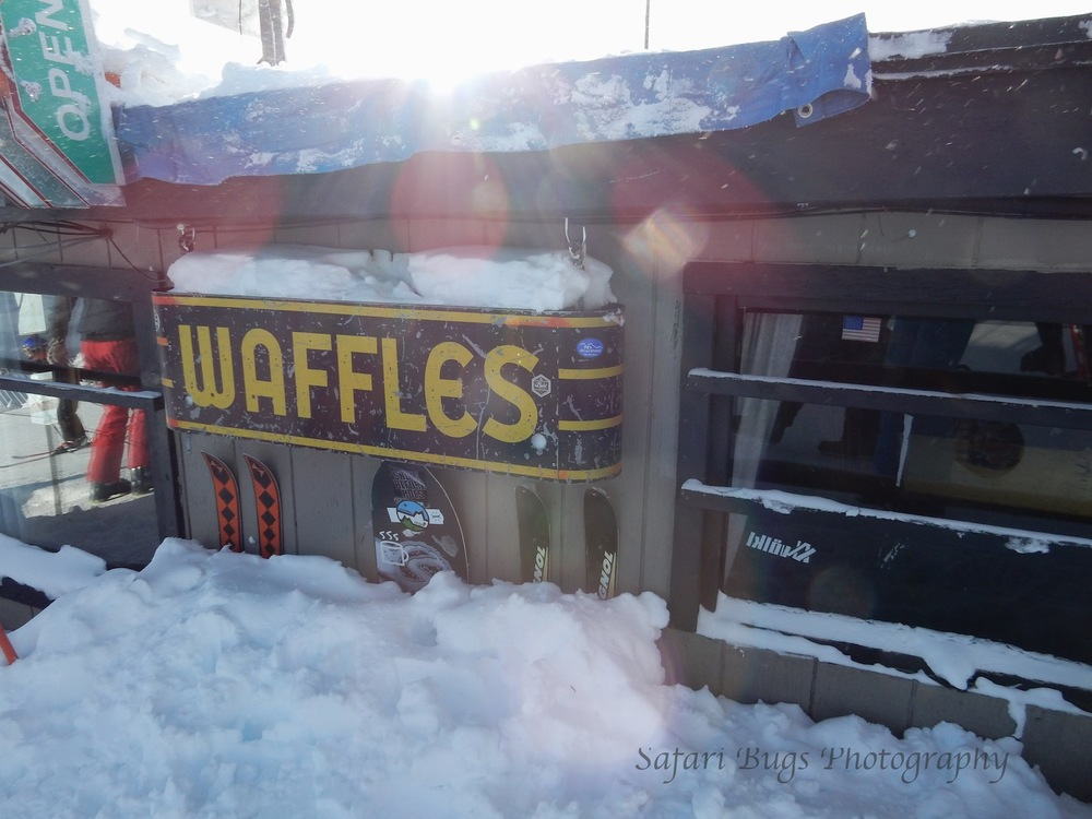 Corbet's for Waffles-2015-16