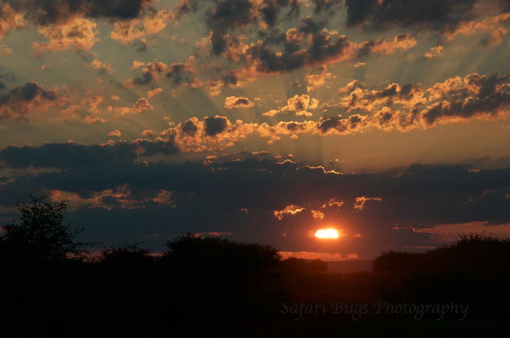 Mateya Sunset.jpg