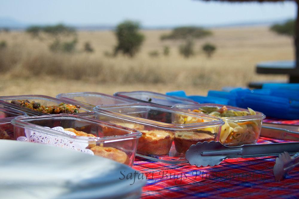 Safari Bugs Roving Bushtops (13).jpg