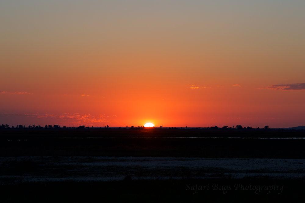 Chobe Game Lodge sunset.jpg