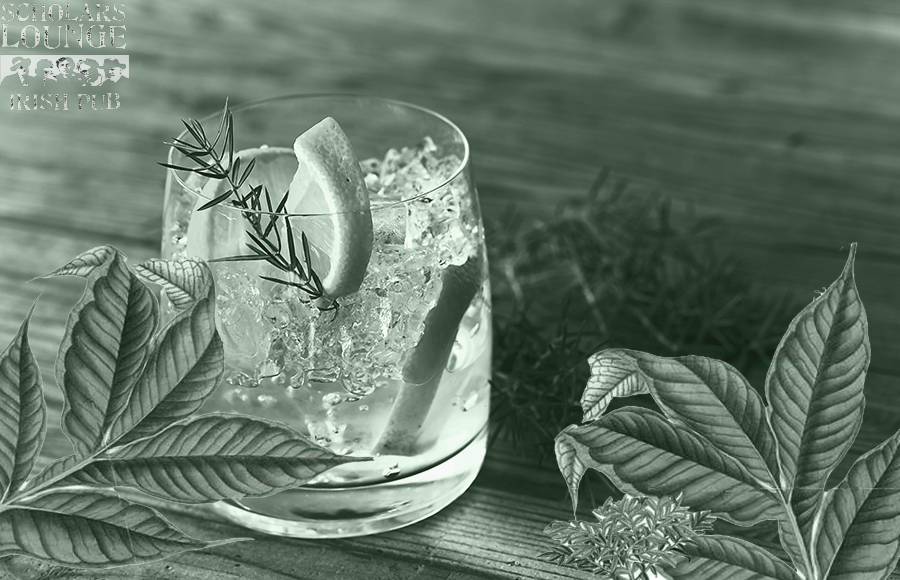 GinWebsite.jpg