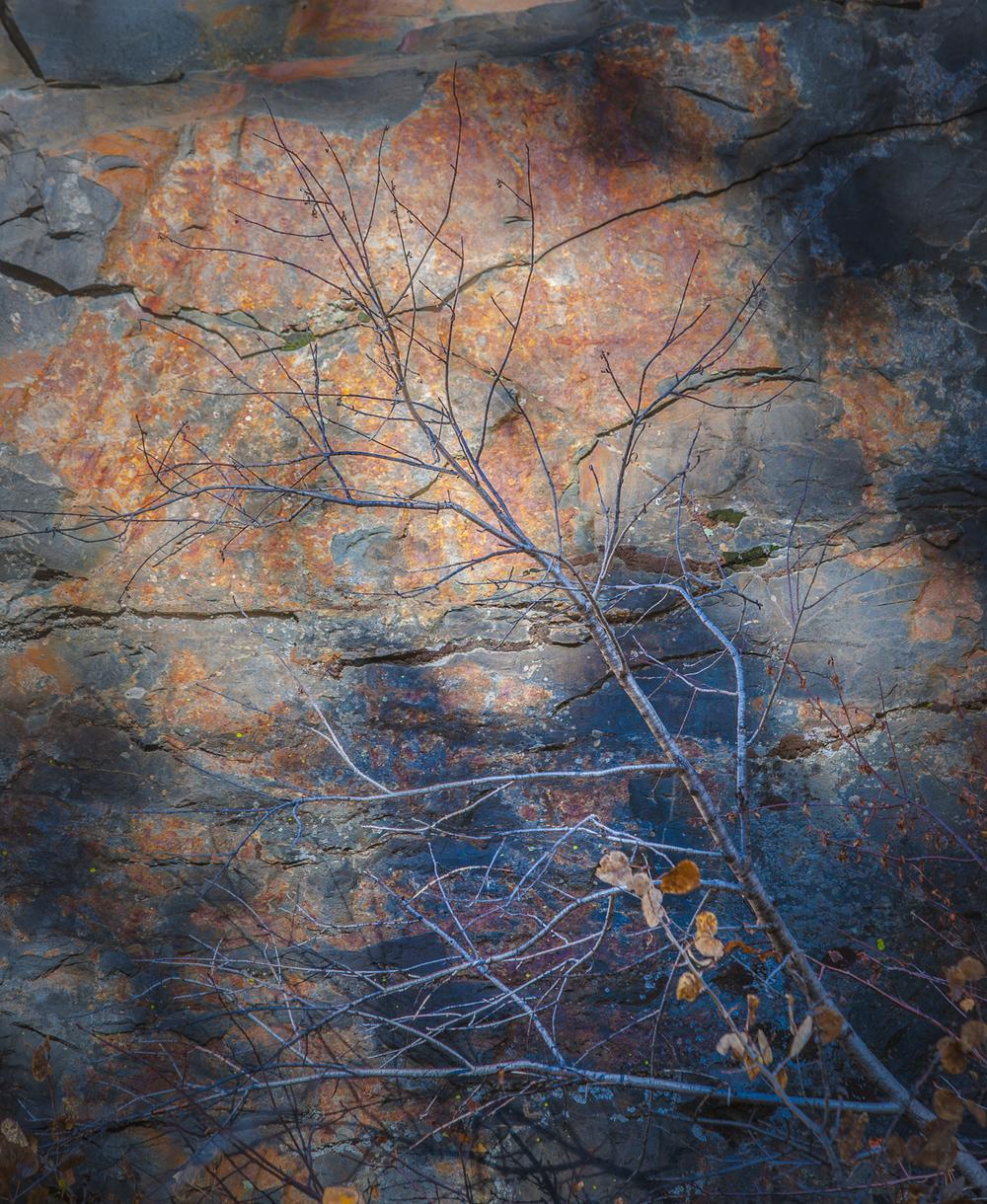 grant-longenbaugh-Eastern-Sierra-18.jpg