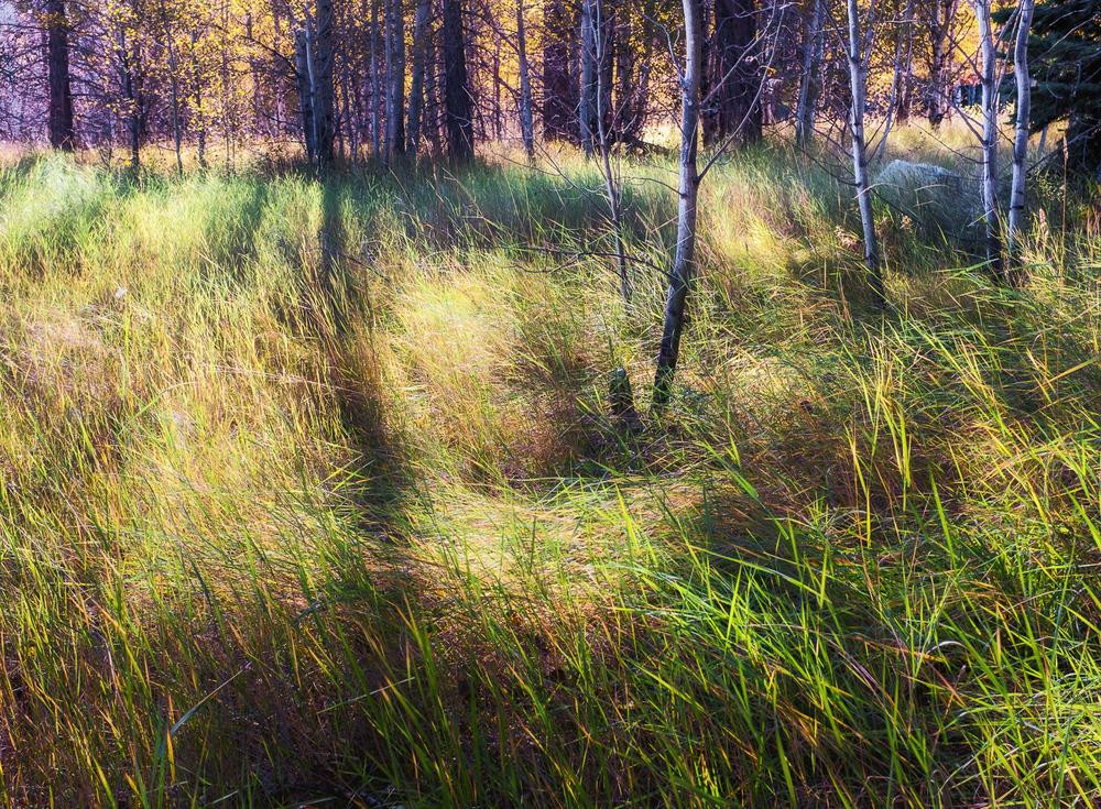grant-longenbaugh-Eastern-Sierra-11.jpg