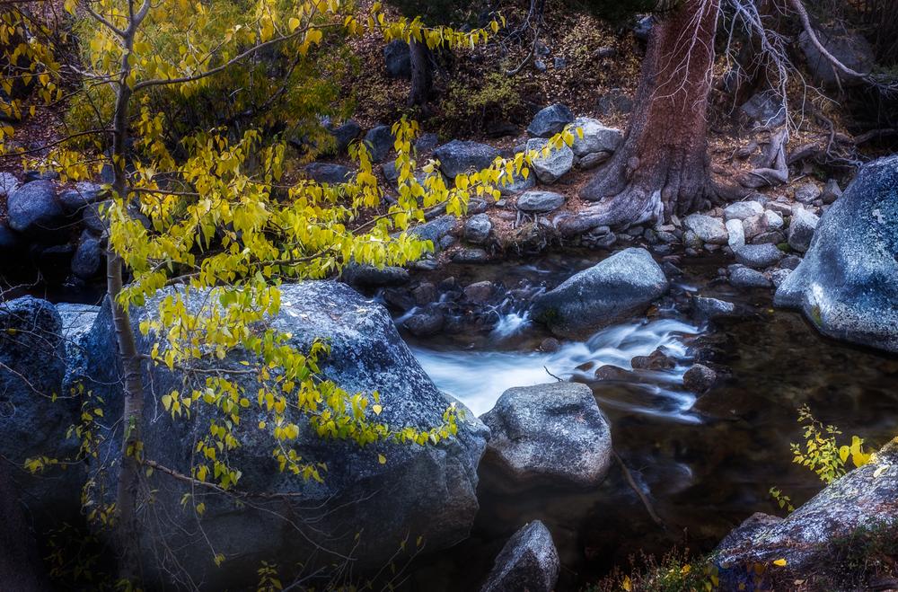grant-longenbaugh-Eastern-Sierra-12.jpg