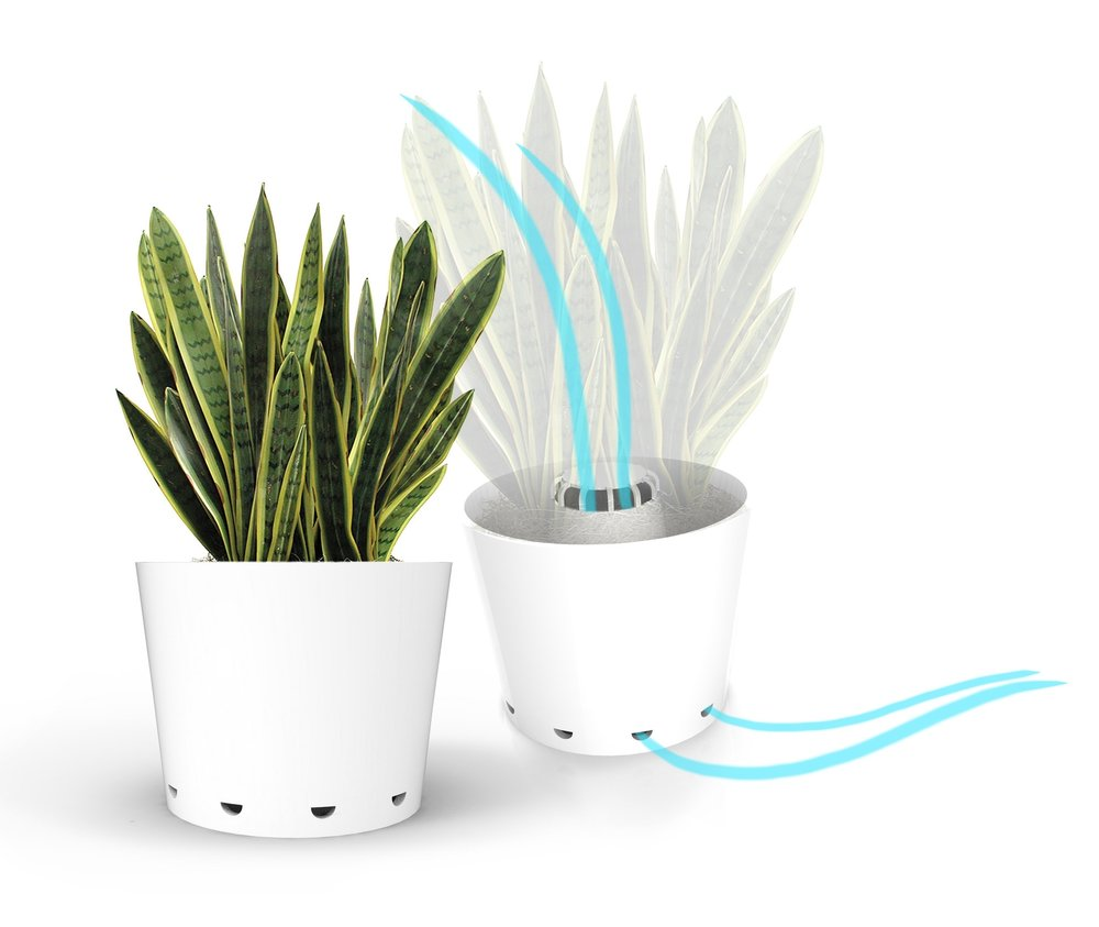 Air Purifier . Designed to increse the benefits of air purifying plants, like the snake plant. A central fan gently moves air through the leaves.