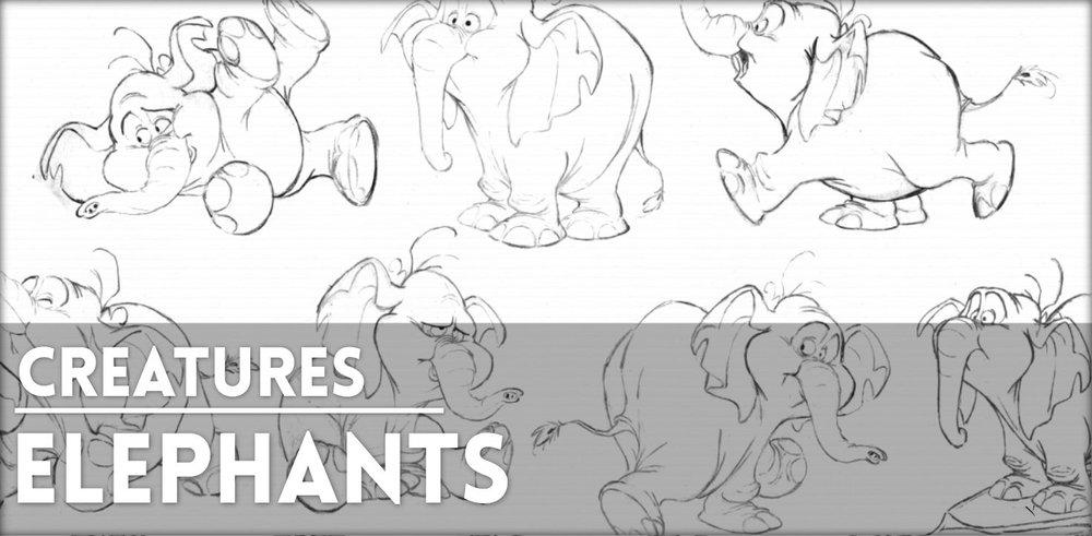 REF-Elephants.jpg