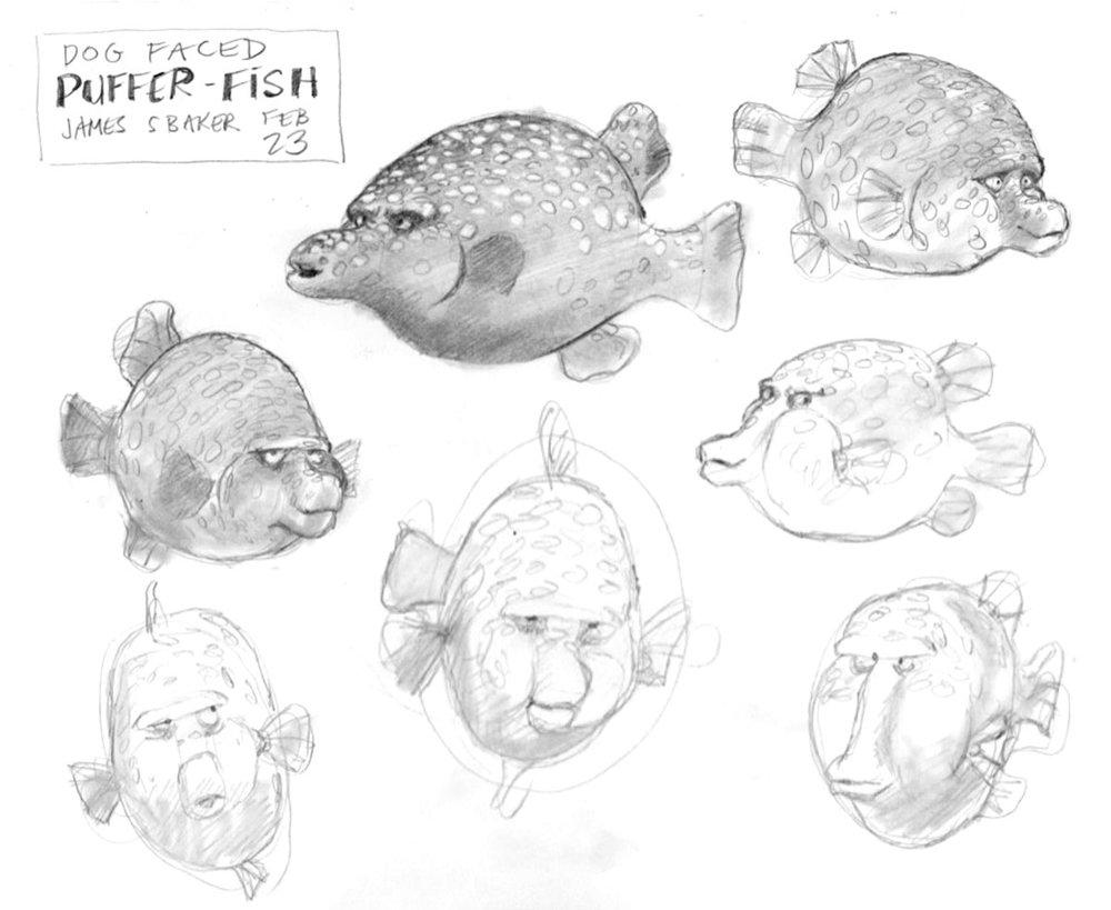 dogface_Pufferfish.jpg