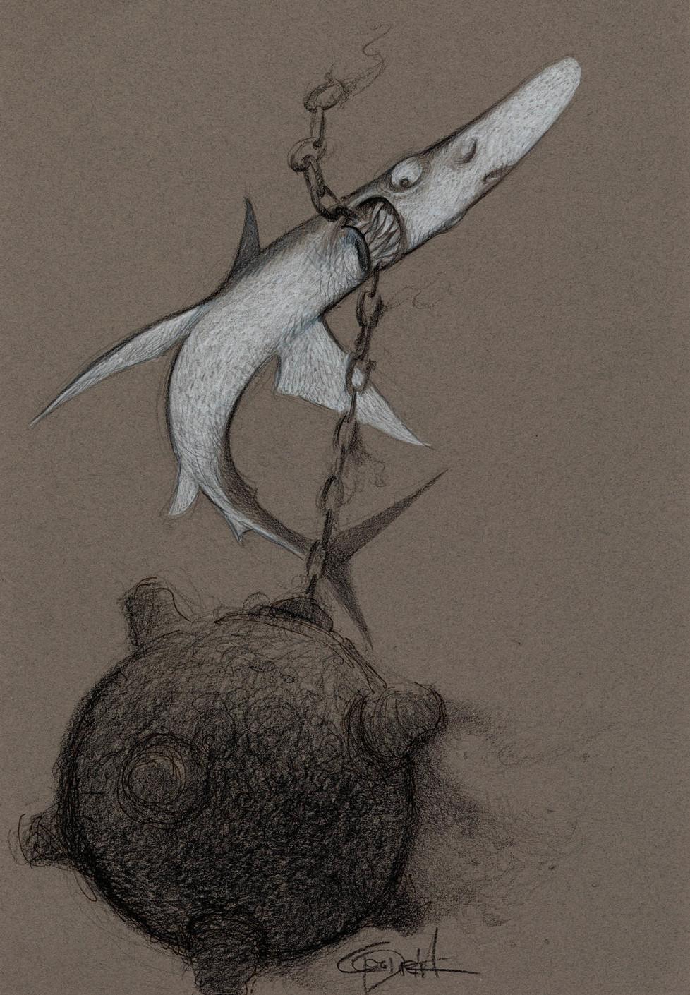 Sharks6a.jpg