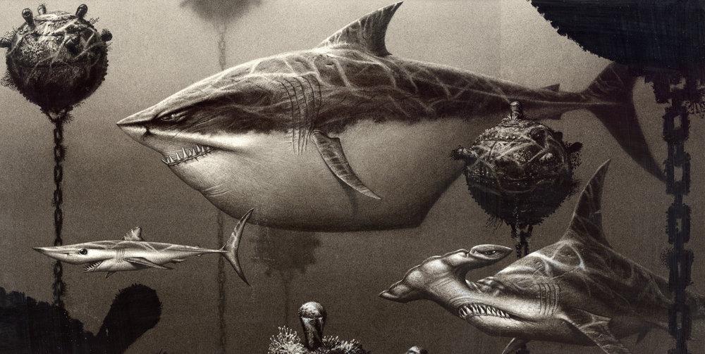 sharks4-Finding-Nemo.jpg