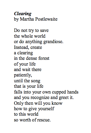 what is the song how to save a life about