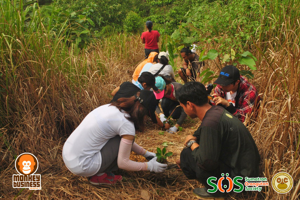 Our restoration coordinator, Rio, assists one of Singapore student to do replanting.JPG