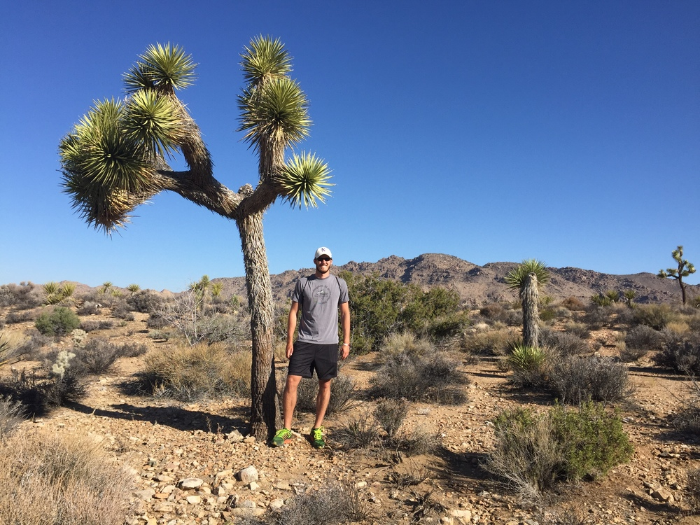 Me standing in front of a Joshua tree