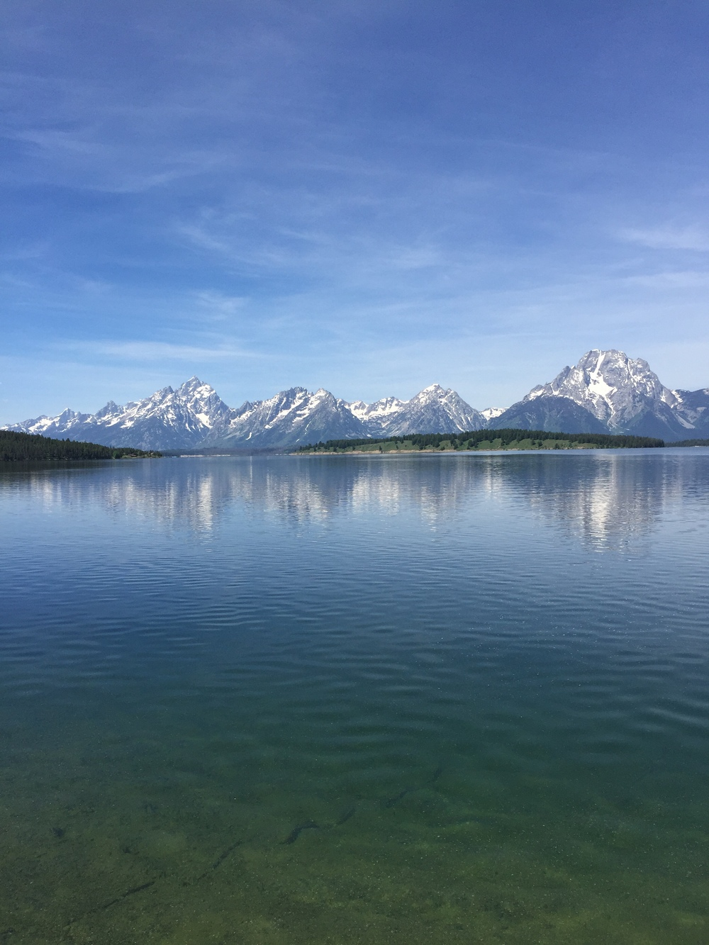 The Grand Tetons from across the lake within the park.