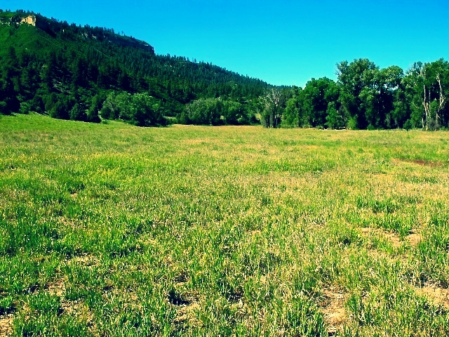 Land for sale near Pagosa Springs, CO