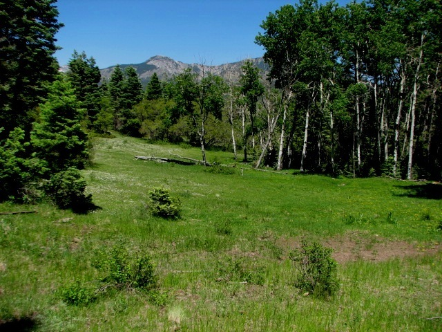 Pagosa Springs Hunting Ranch