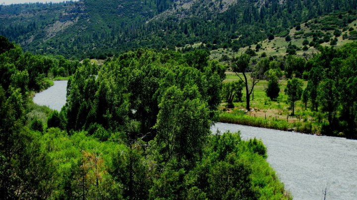 Fishing ranches for sale - Paradise River Ranch