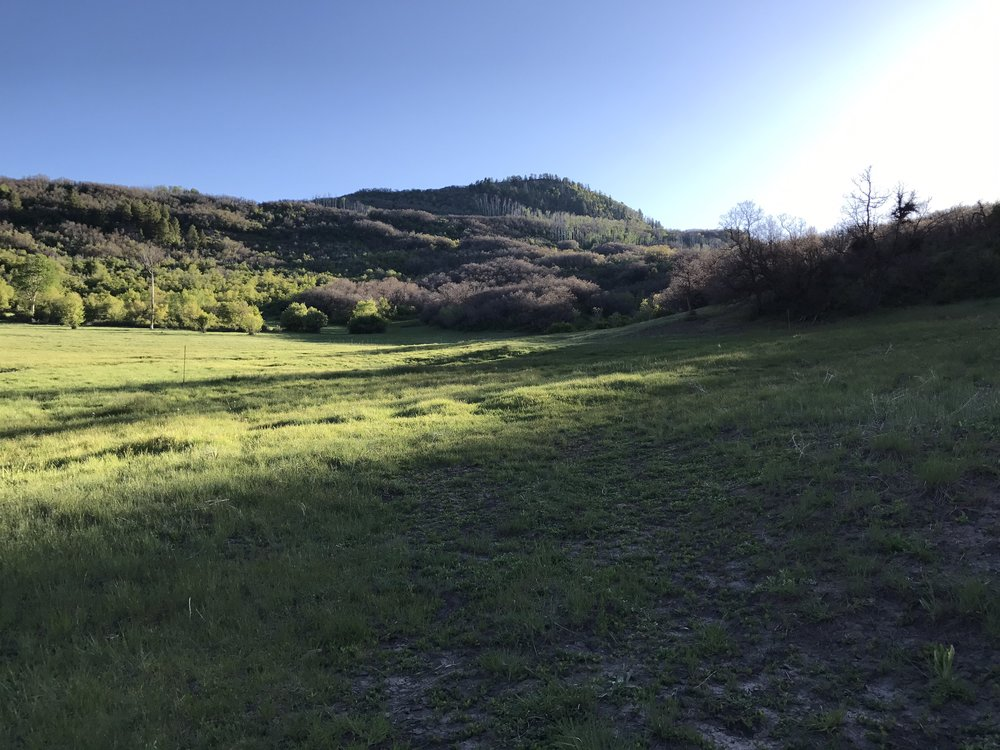 CO Hunting ranch