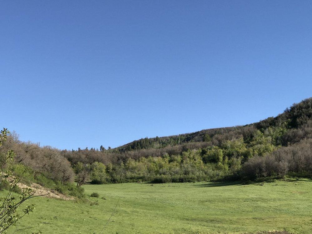 Colorado hunting ranches