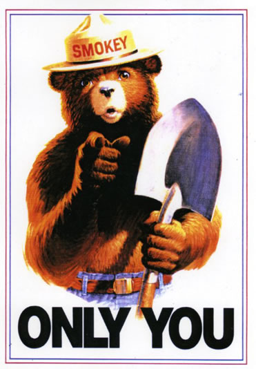 Only You can prevent professional shaming. Image