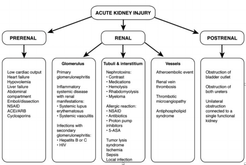So for a thorough review of the causes of AKI… (Image)