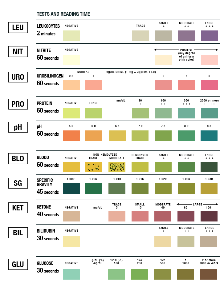 The 10 parameters on a basic urinalysis (UA). You can imagine how color blindness would basically make this impossible to interpret!  (Image)