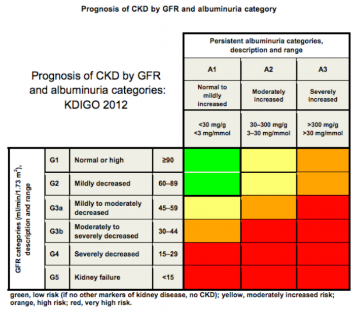 The prognosis of CKD based on GFR and albuminuria. There's a LOTTA red here.  (Image)