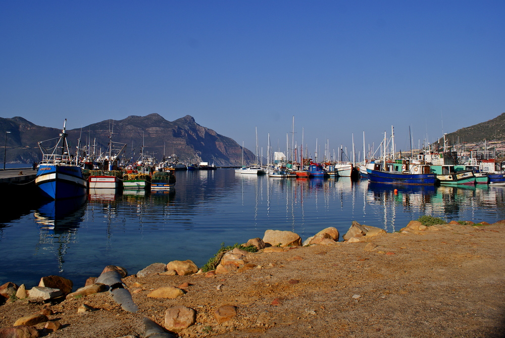 Boats docked in a harbor on the southern coast of South Africa.