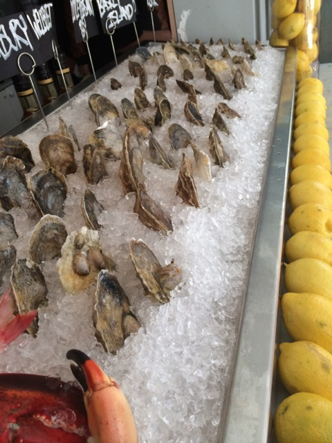 Oysters on ice - Oyster Century Club