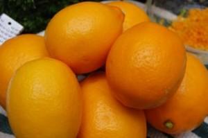 meyer_lemons