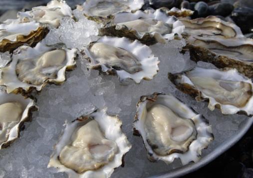Platter of oysters - Jon Rowley