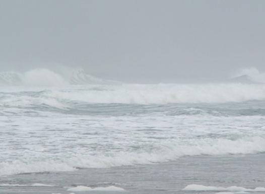 Surf - Jon Rowley