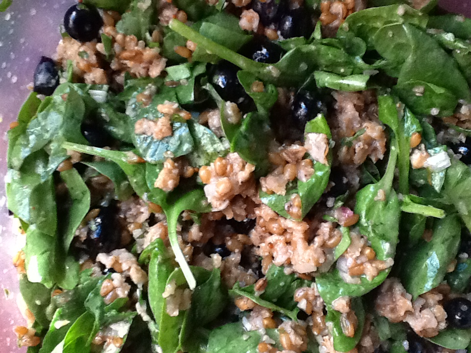 wheatberry blueberry salad