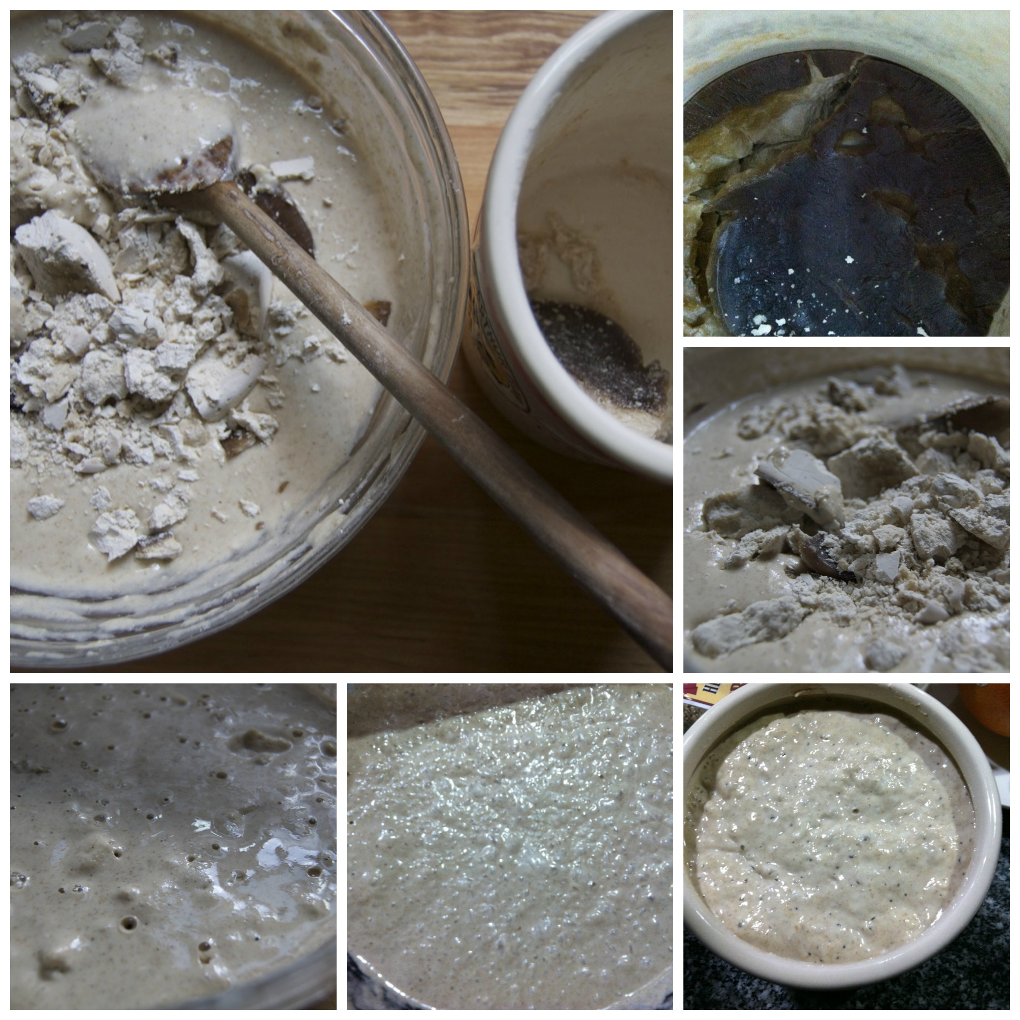 Sourdough starter recovery