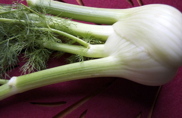 Fennel apple celery2