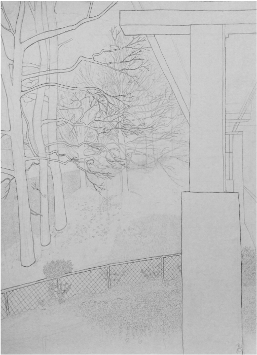 "Size:  24""x18""   Medium:  Graphite on paper  School:  Arcadia University, 2015"