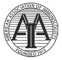 AAI Logo screenshot.png