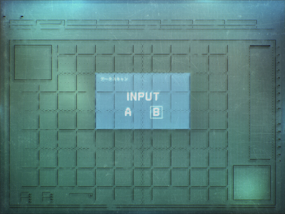 input1.jpg