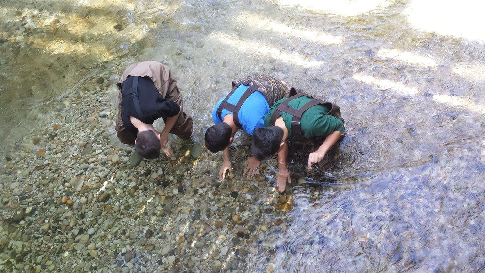 boys_in_river.jpg