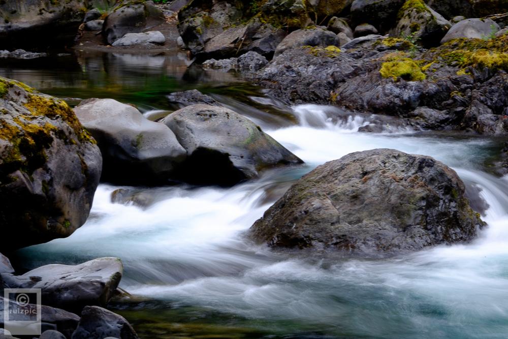 JustinRuizPhotography_DSF0383_20150711 Sol Duc River Salmon Cascade.JPG